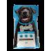 Alimento cães de manutenção 20kg