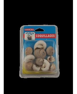 Conchas Decorativas - Caracoletas