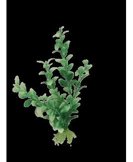 Planta Decorativa para Aquário média
