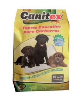 Tapete educativo para cachorros
